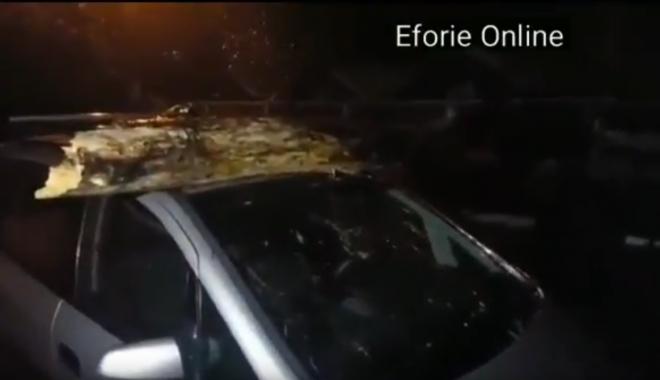 Foto: VIDEO. VIJELIA A FĂCUT RAVAGII, LA CONSTANȚA / COPAC CĂZUT PESTE MAȘINĂ, ÎN EFORIE NORD
