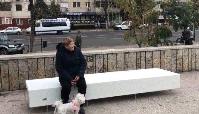 Foto: CONSTANȚA SE ÎNFRUMUSEȚEAZĂ! Bănci noi pentru Parcul Casei de Cultură!
