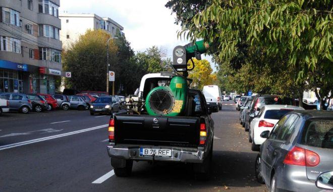Pomii din Constanța, stropiți împotriva dăunătorilor - untitled-1571228442.jpg