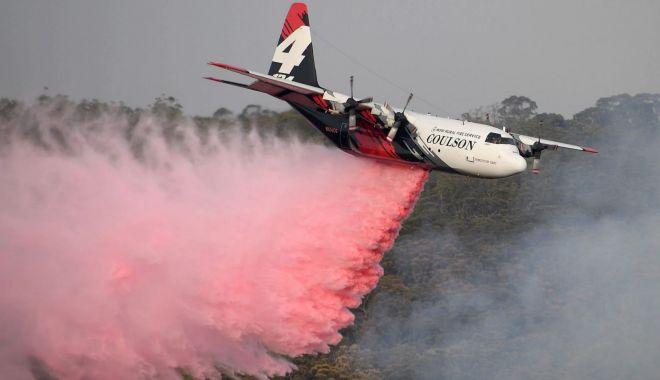 Foto: Avion PRĂBUȘIT în această dimineață! Trei morți; cauzele tragediei - încă necunoscute