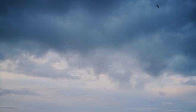 Vânt puternic, cu temperaturi ridicate, astăzi, la Constanţa - vant-1602524926.jpg