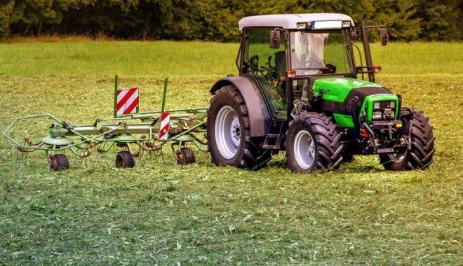 Foto: Vrei să cumperi terenuri agricole? Iată ce îți oferă județul Constanța