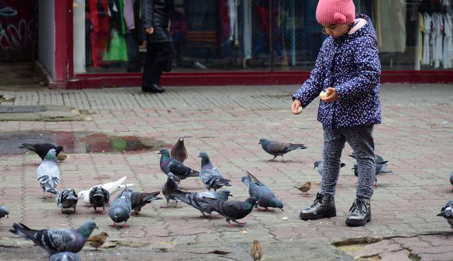 Vreme închisă şi rece, la Constanţa - vreme-1604517614.jpg