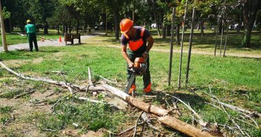 Spațiile verzi din municipiul Constanța sunt îngrijite zilnic