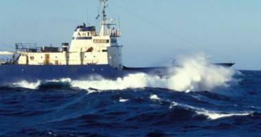 TRAGEDIE PE APĂ. Cel puțin 54 de morți în urma scufundării unei nave de pescuit