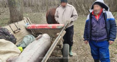 VIDEO / Sturion de 140 kg, redat mediului natural