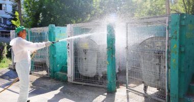 Acțiuni de dezinfecție a platformelor de deșeuri, în municipiul Constanța