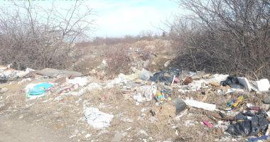 Amenzi pentru proprietarii terenurilor necurăţate de gunoaie