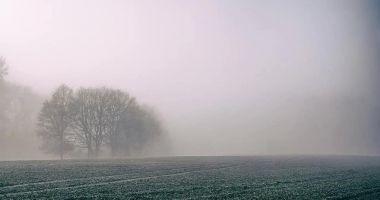 COD GALBEN de ceaţă, la Constanţa