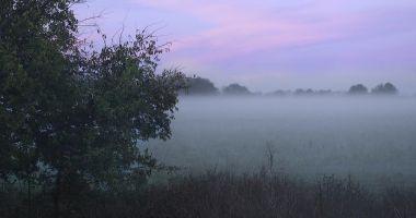 COD GALBEN de ceaţă densă, la Constanţa