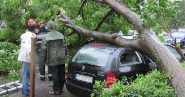 Constănțeni, atenție! Informație importantă de la Centrul Meteorologic Dobrogea