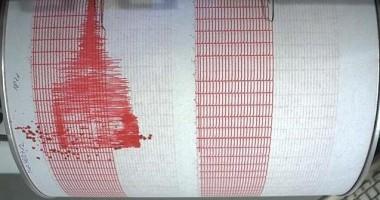 Un cutremur cu magnitudinea de 7,5 a avut loc în largul Guatemalei