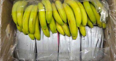 Cocaină de 2 milioane de euro, într-o încărcătură de banane