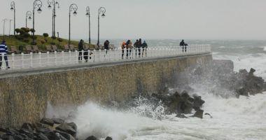 COD GALBEN de vânt intens, în Dobrogea
