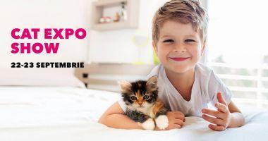 Expoziție  de pisicuțe,  în week-end, la VIVO! Constanța