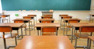 Trei școli din județul Constanța, parțial închise, din cauza gripei