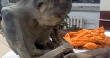 Un călugăr mumificat acum 200 de ani nu ar fi mort, ci într-o stare de meditație profundă