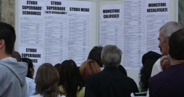 Cauți de muncă? Iată câte locuri de muncă sunt vacante în rețeaua Eures