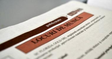 Locuri de muncă vacante pentru șomeri. Iată care sunt ofertele!
