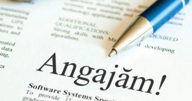 Câți români și-au găsit loc de muncă anul acesta