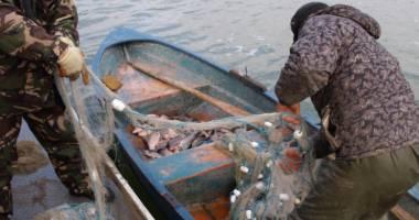 Bulgari prinși în timp ce pescuiau ilegal, în România