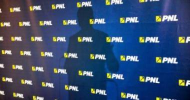 O actriță celebră intră în PNL și va candida la alegerile locale
