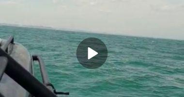 FOTO / VIDEO. Acțiune de căutare și salvare pe Marea Neagră. Ambarcațiune cu o persoană la bord - DISPĂRUTĂ!