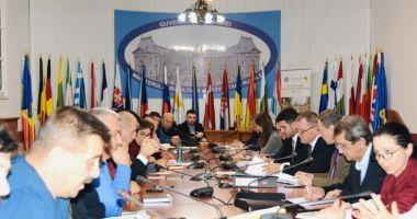 Modificări legislative și acces pe piață. Prioritățile agriculturii românești