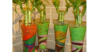 Ce plante absorb mirosurile și toxinele din casă