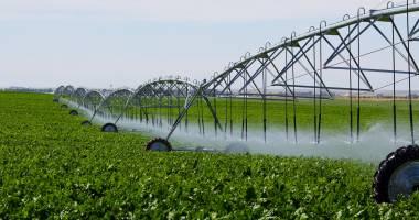 Sute de milioane de euro pentru proiectele de irigații