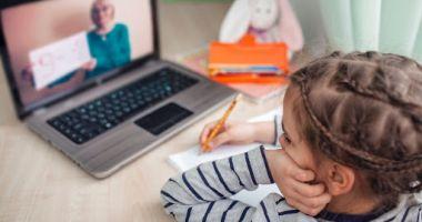 Toate grădiniţele şi şcolile din Valu lui Traian şi Kogălniceanu trec la cursuri online