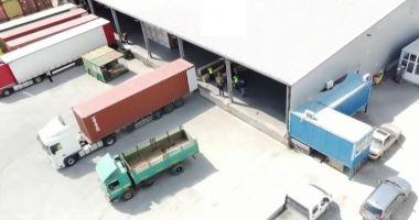 VIDEO. Container cu ţigări nedeclarate, descoperit în Portul Constanţa
